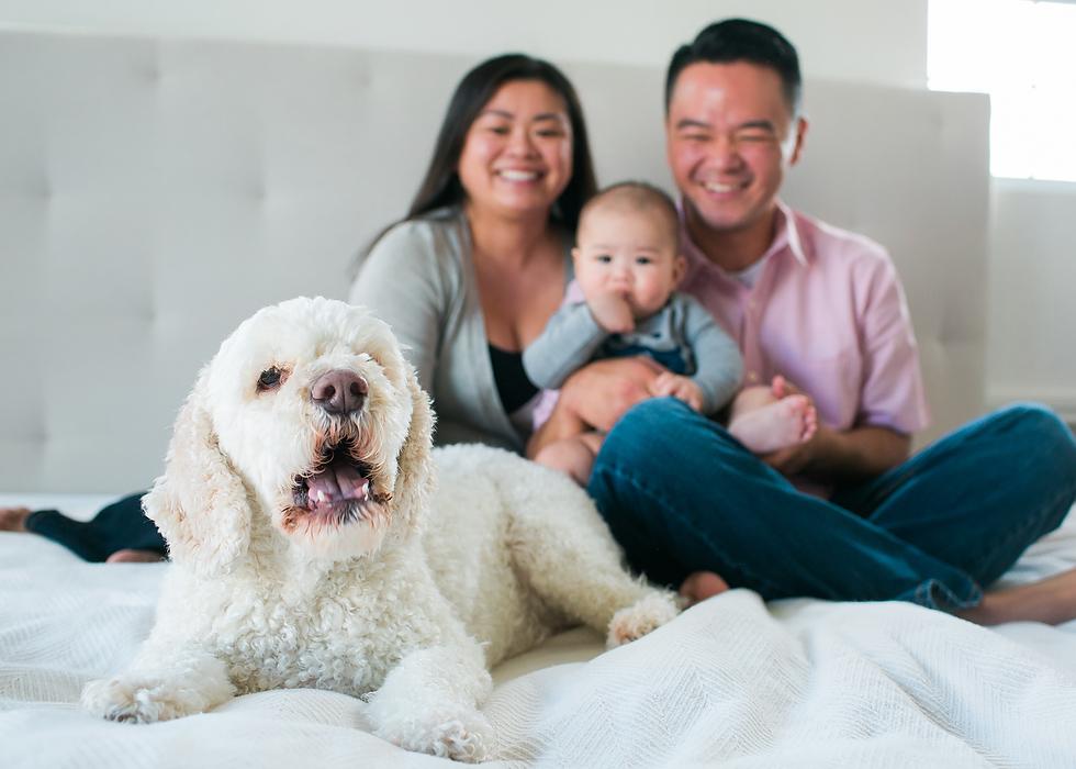 San Francisco Bay Area Family Photographer 0017.JPG