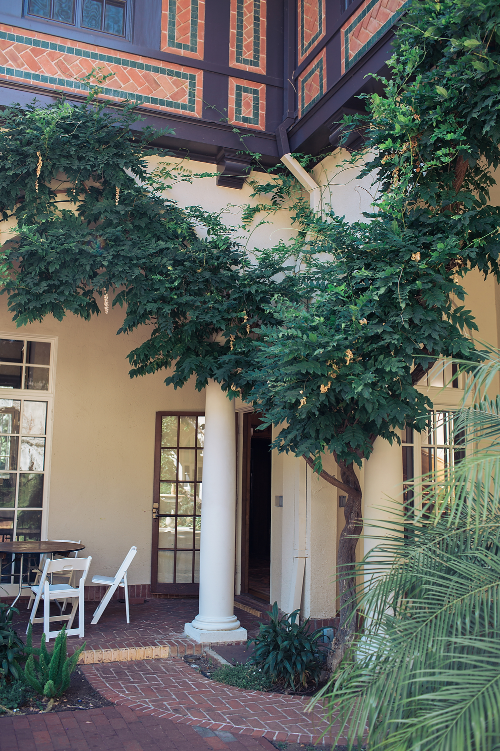 The wisteria in summer, while not in bloom, is still a gorgeous aspect of the venue