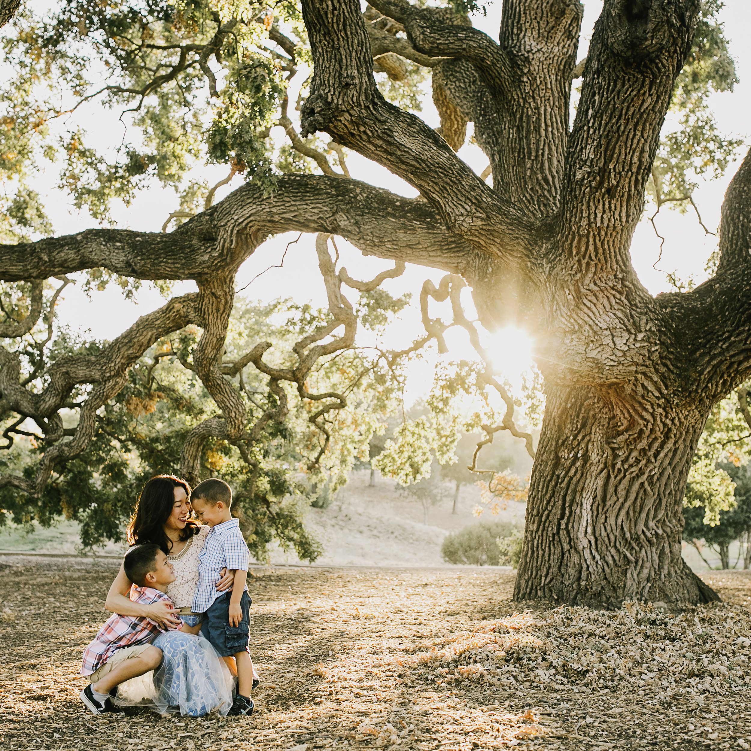 single mom with two little boys asian under big beautiful tree at sunset.jpg