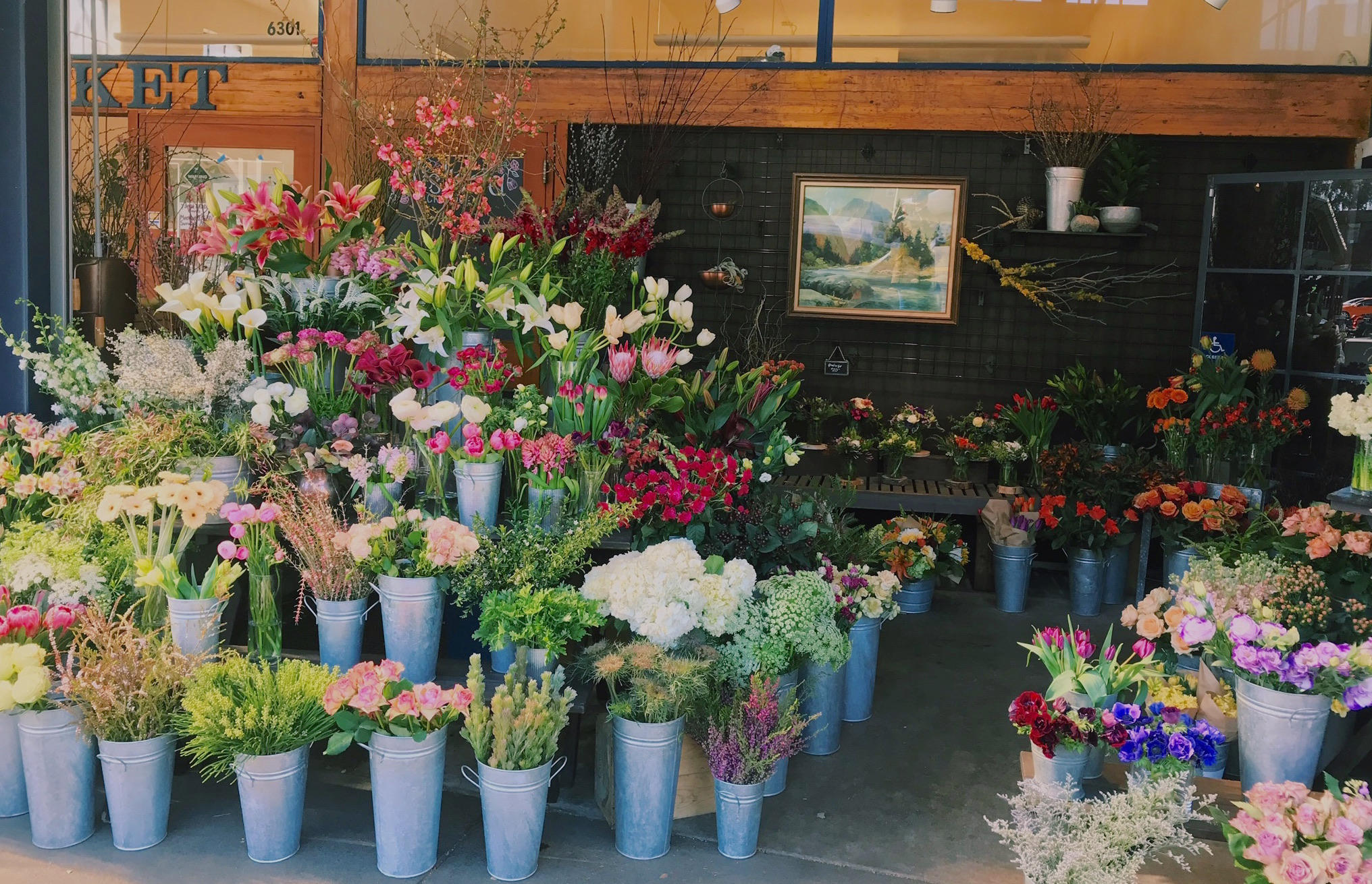 Wisteria Store Front.JPG