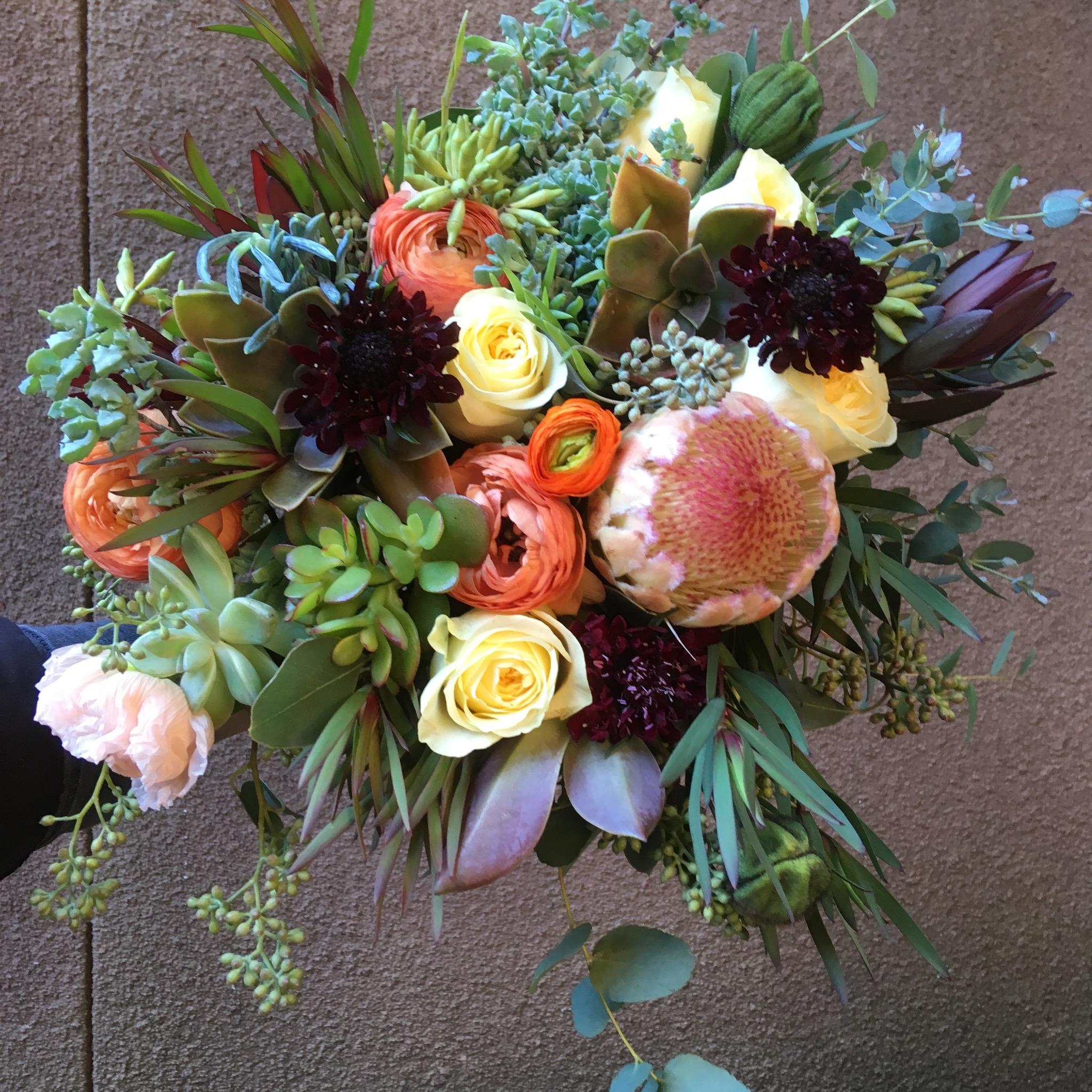 Bridal bouquet, Protea:Scabiosa:Succulents.jpeg