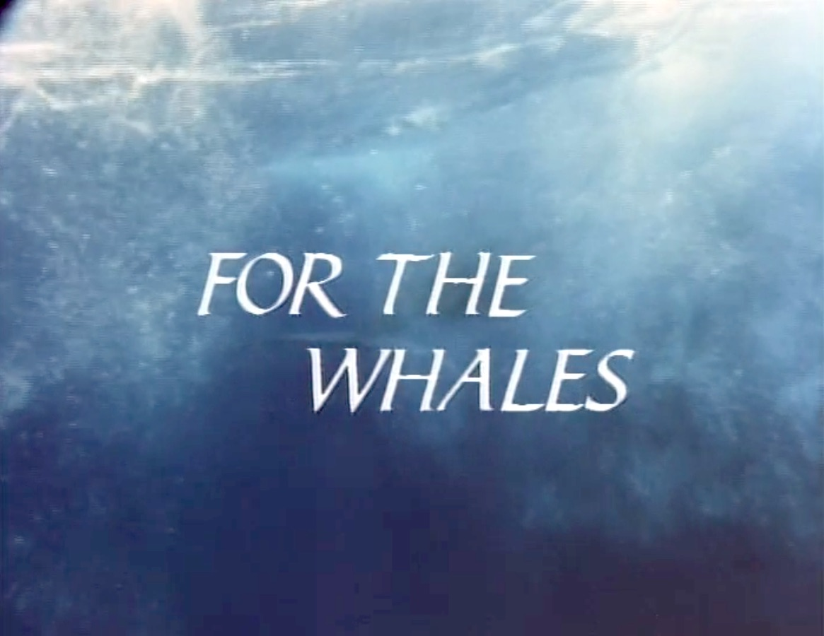 For The Whales.jpg