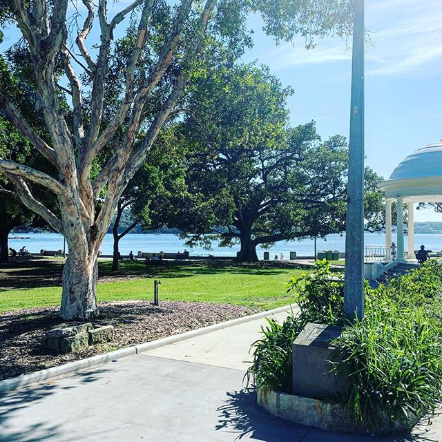 Not a bad spot for the 1st meeting of the day.... @batherspavilion @balmoral.beach @peregrinewines  #sydney #summertime #winetime #newzealandwine #naturalbeauty #sydneyharbour #homesweethome