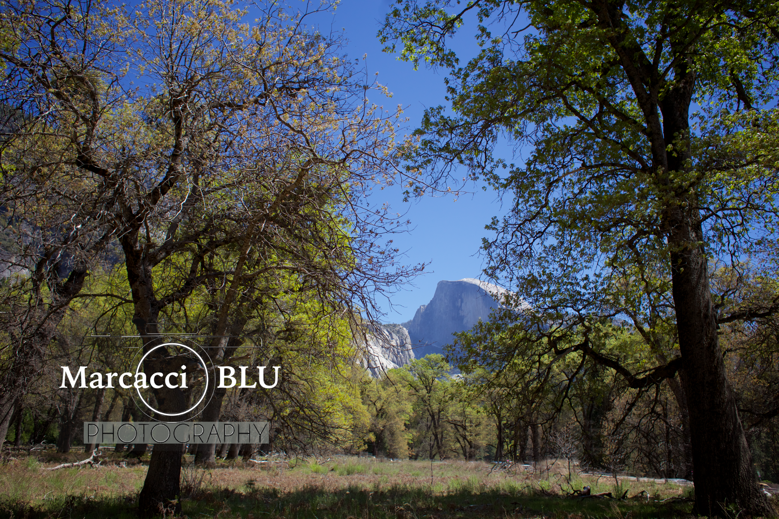 Yosemite3.png
