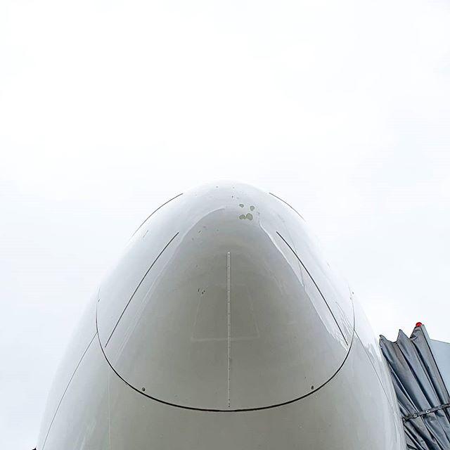 . 機長「我上次去飛,暴風雨。那閃電啪喳一下打到飛機好大聲!當下真的以為沒有明天了!」 我:「教官,你做了什麼壞事,會被雷打?」 機長「拜託,要不是我在飛機上,那個 FO 就被劈死了啦!」 /  心疼躺槍的學長/學弟三秒鐘  #airport #airplane #radome #lightningstrike #pilotlife #instapilot #aviationphotography #pilotview #instapilot #aviation4u