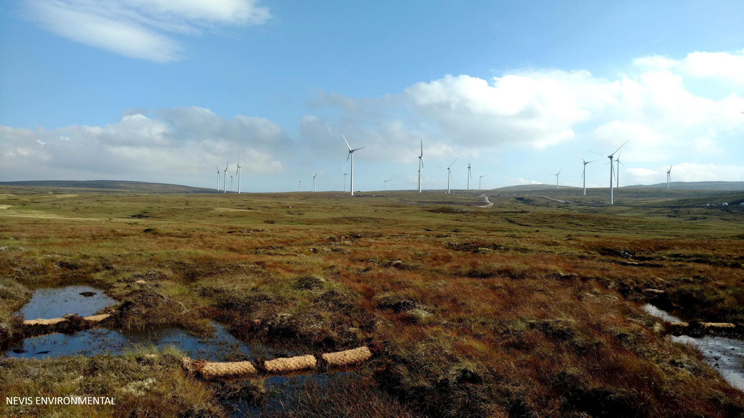 Peat Bog Restoration Highlands
