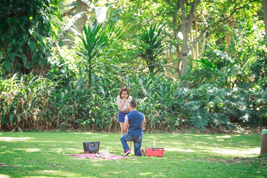 botanic gardens engagement proposal rbadal photography durban down on one knee