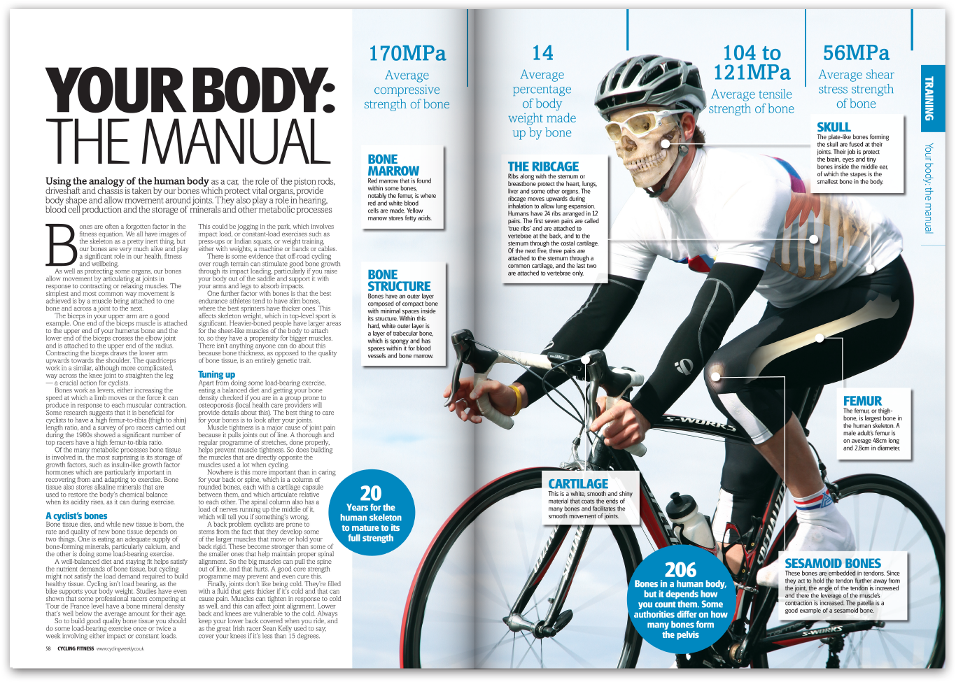 This was a regular feature where I Photoshopped the workings of the body onto cyclists to illustrate the text