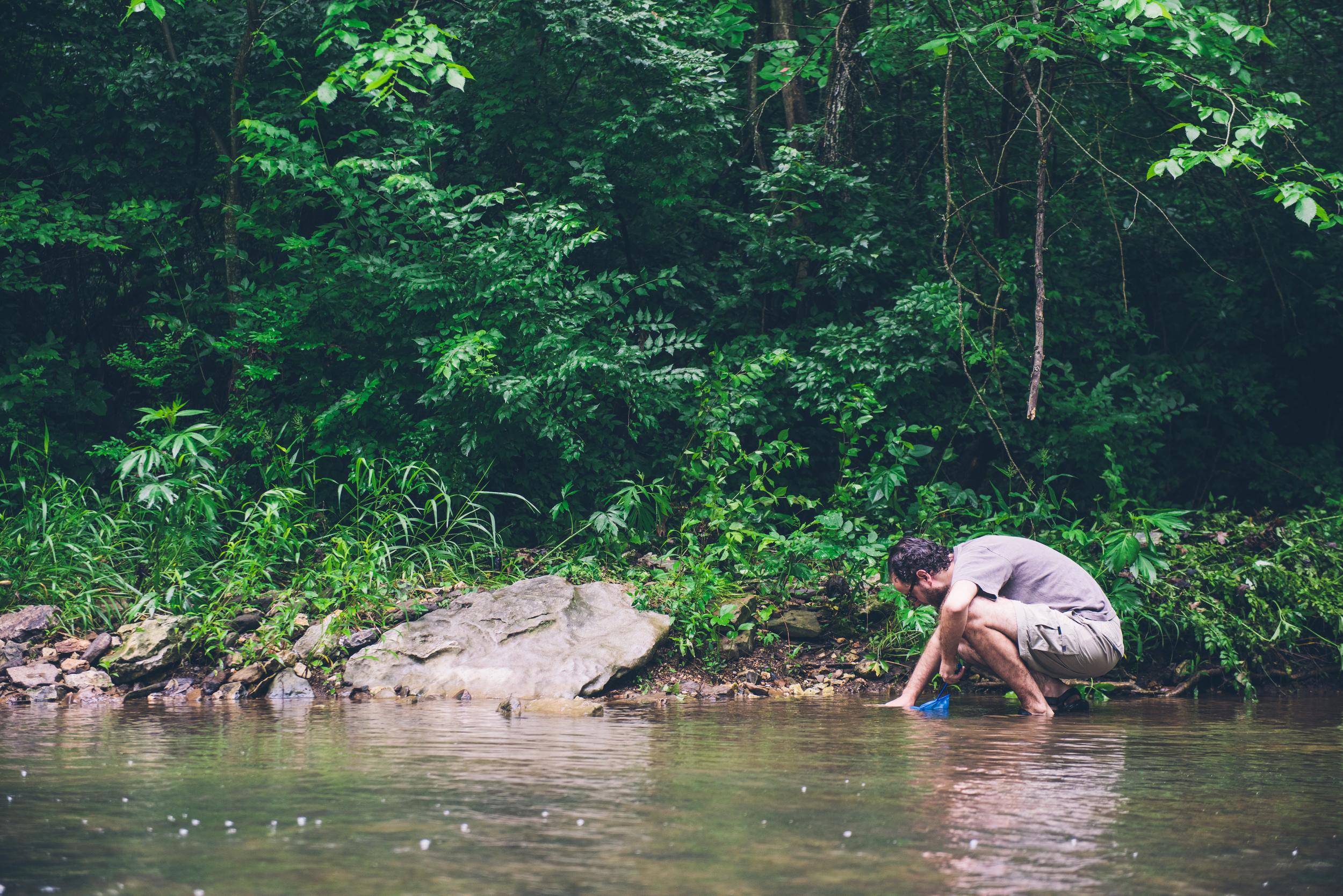 Looking for crayfish - Arkansas