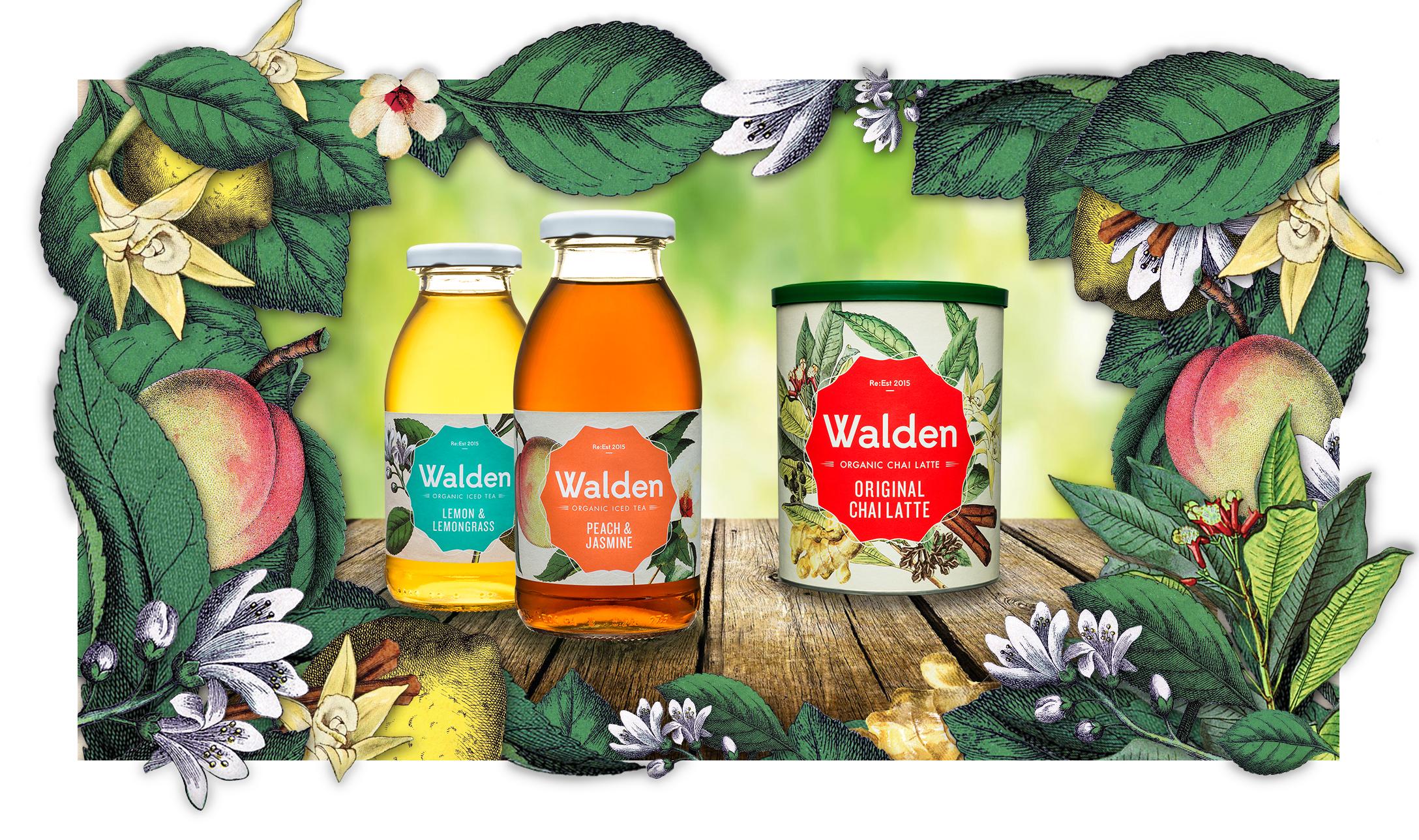 Walden Key Visual