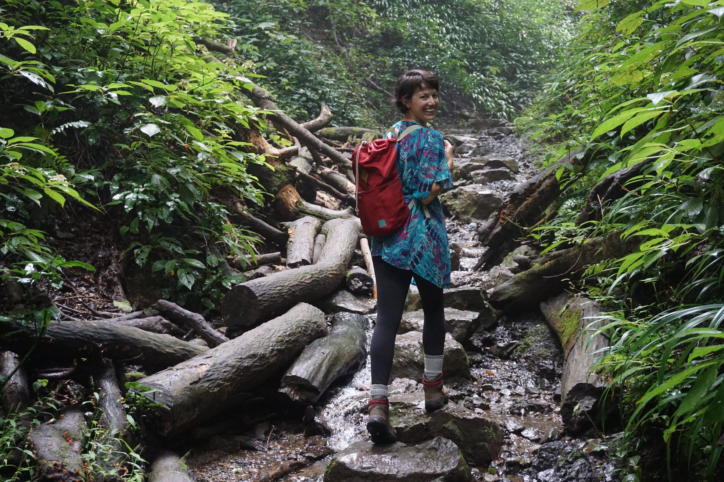 Takao_Hike_Trail 6_Stream