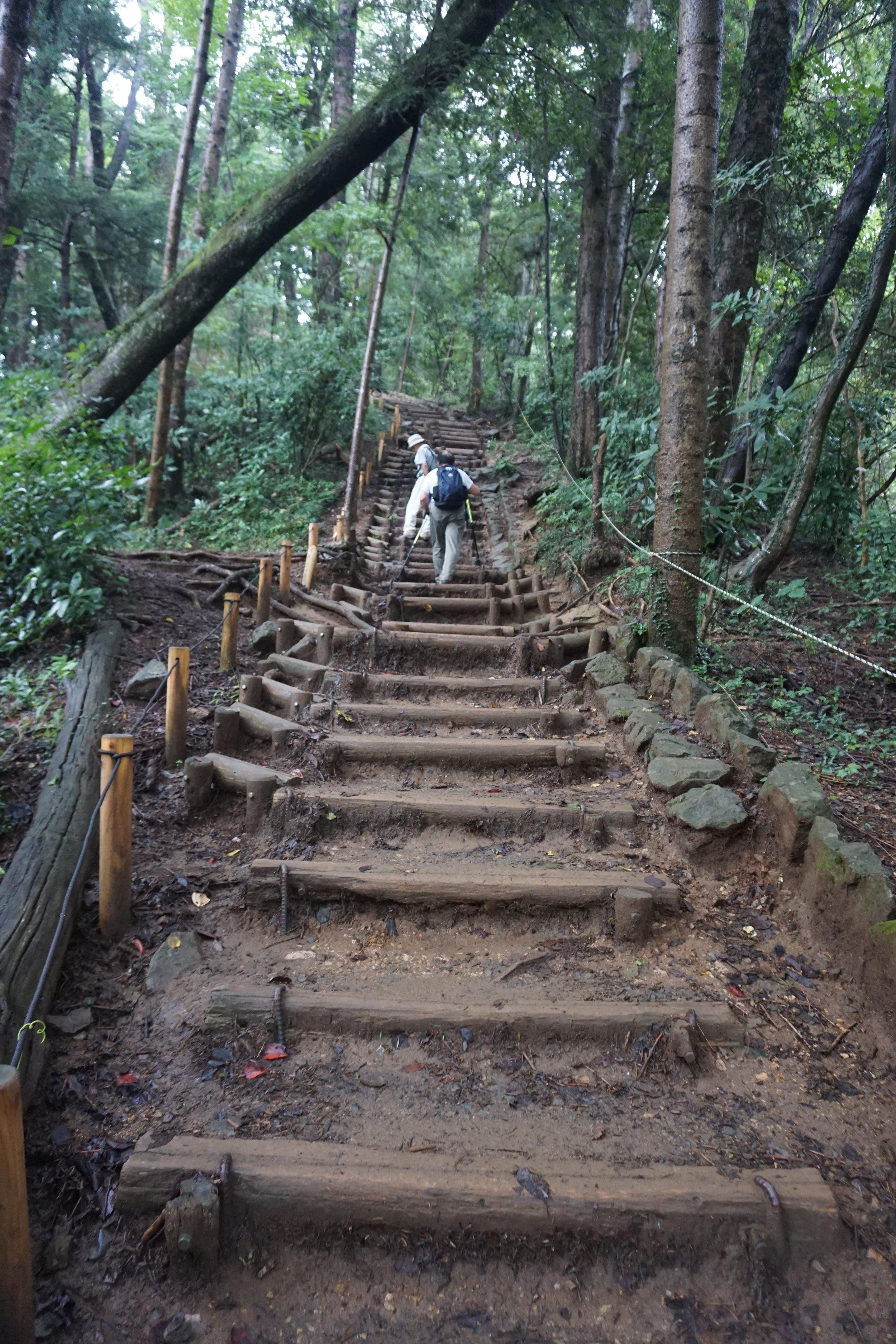 takao_hike_inariyama_trail_stairs