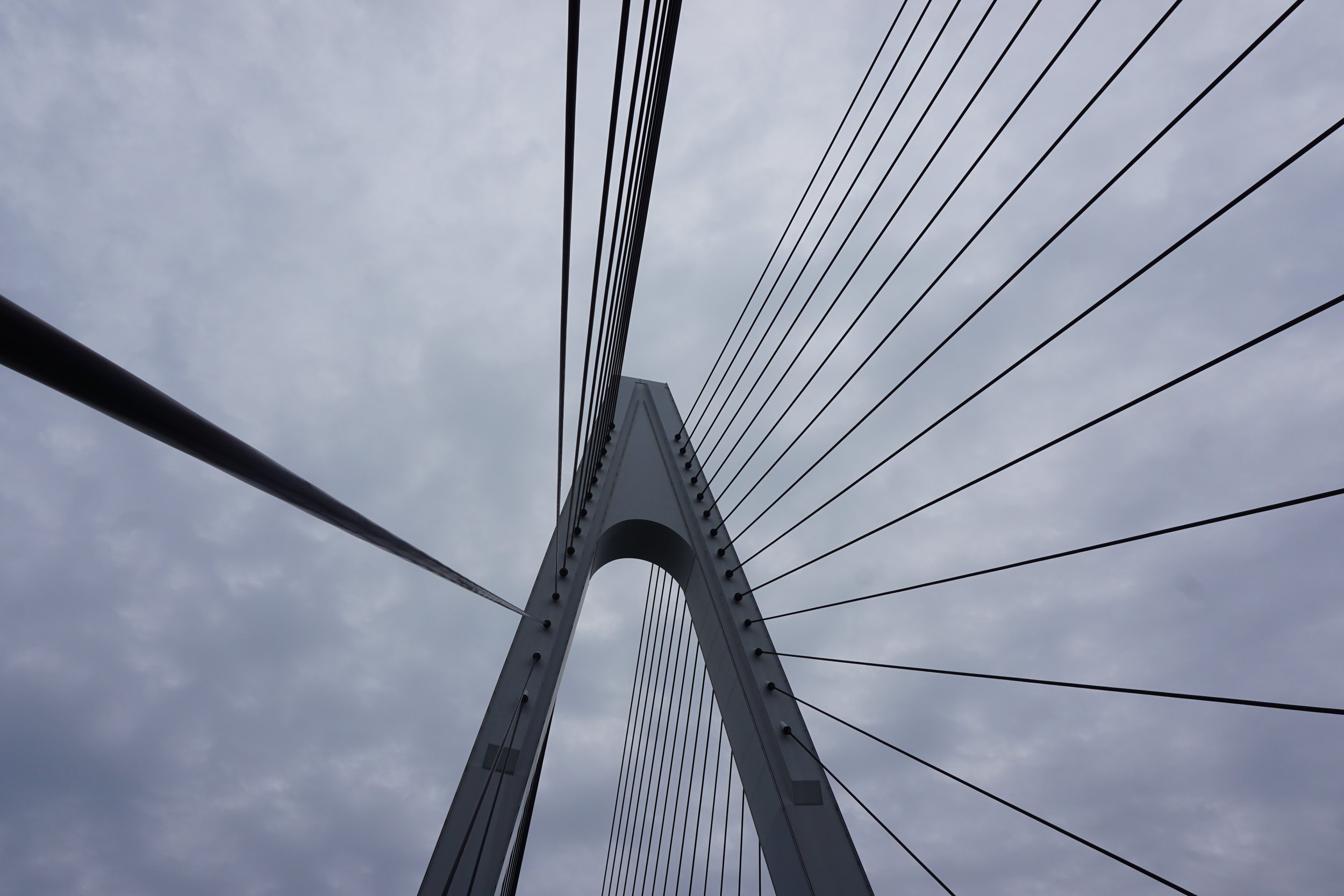 Half-Day - 28.5 KM