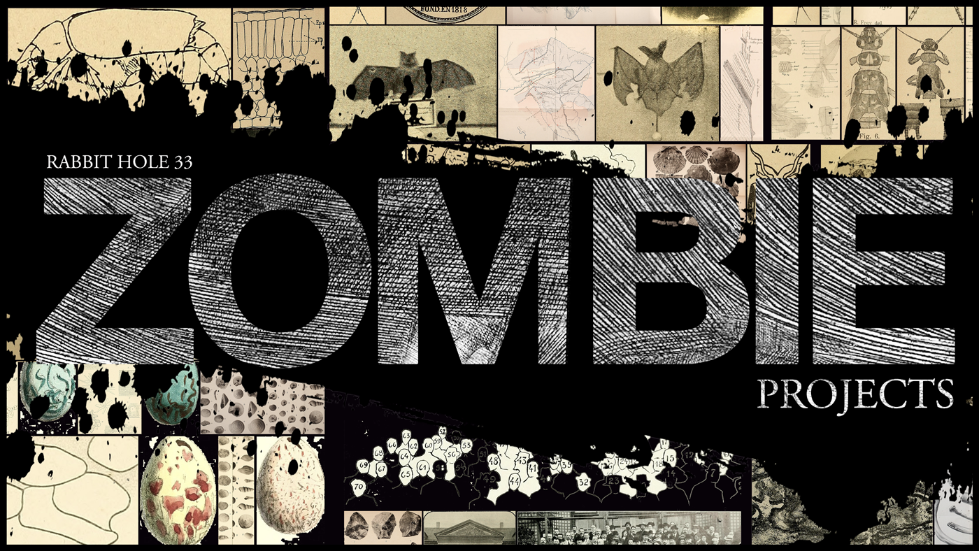 cover33_zombieprojects_c2015_agray1.png