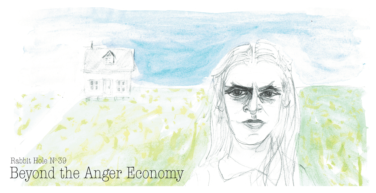cover39_theangereconomy_c2015_agray2.png