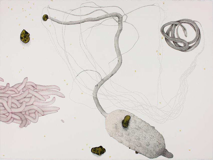 Aurum, 2018, ink, graphite and pencil on paper, 57 x 76 cm