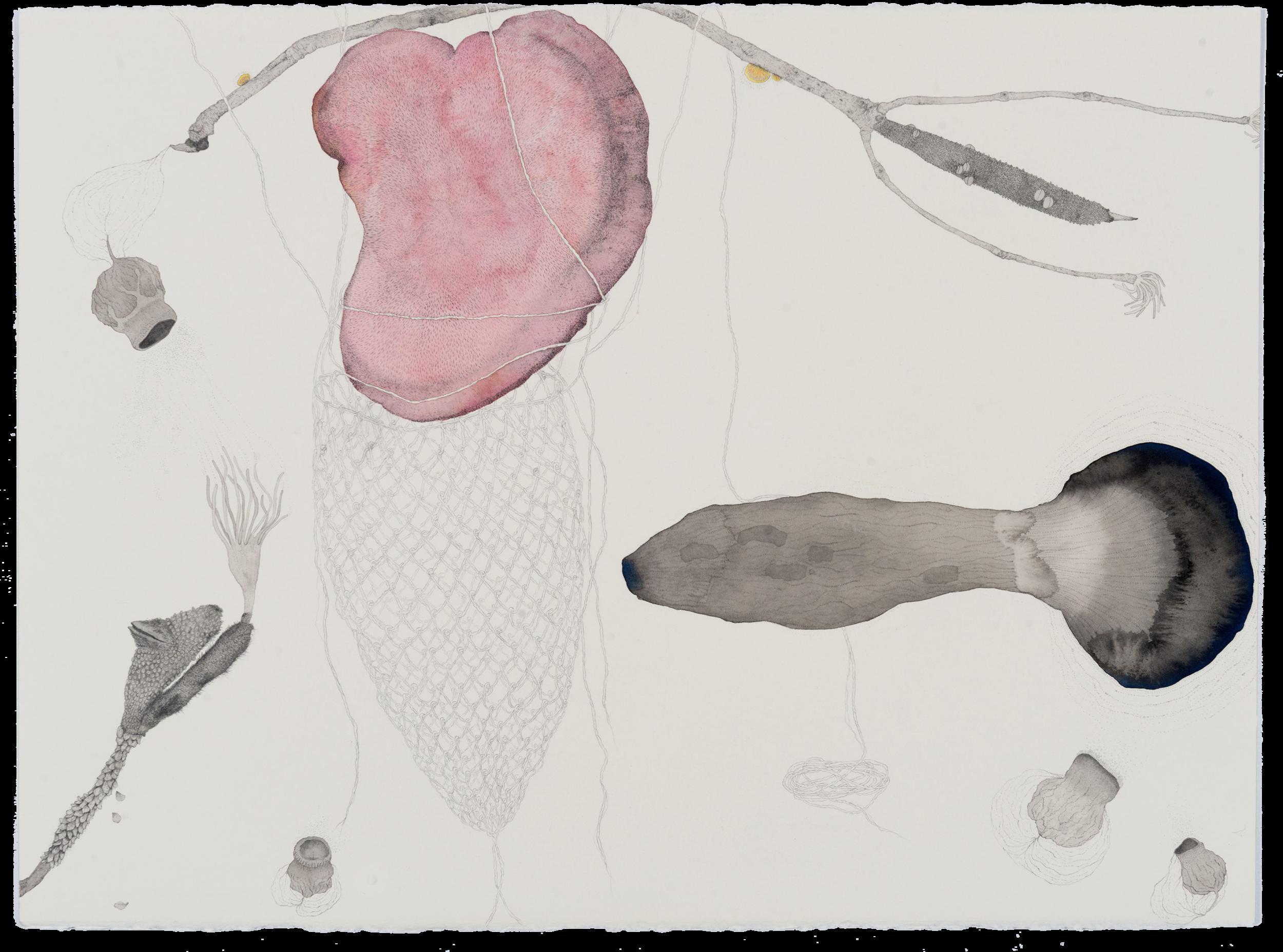 Filum, 2017, ink, graphite and pencil on paper, 57 x 76cm. Photographer: Eva Fernandez