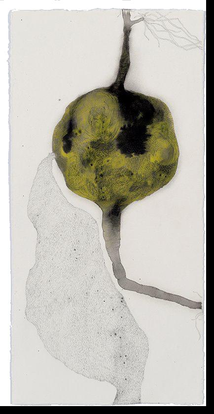 Pullulate, 2017, ink, graphite and pencil on paper, 56 x 27.5 cm Photographer:Eva Fernandez