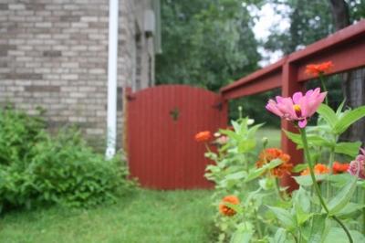Kitchen garden gate