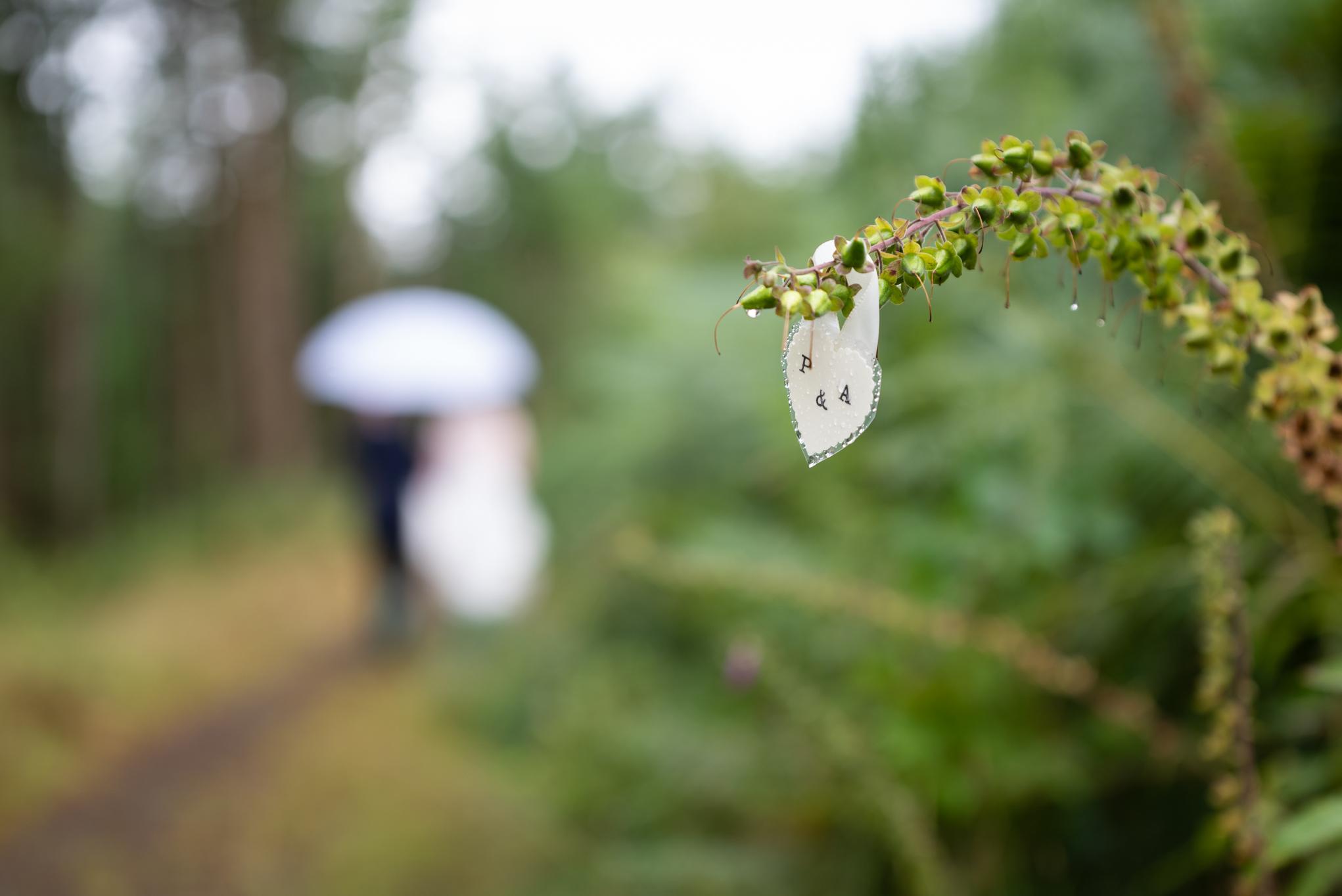 Wedding - Powys Wedding Photography