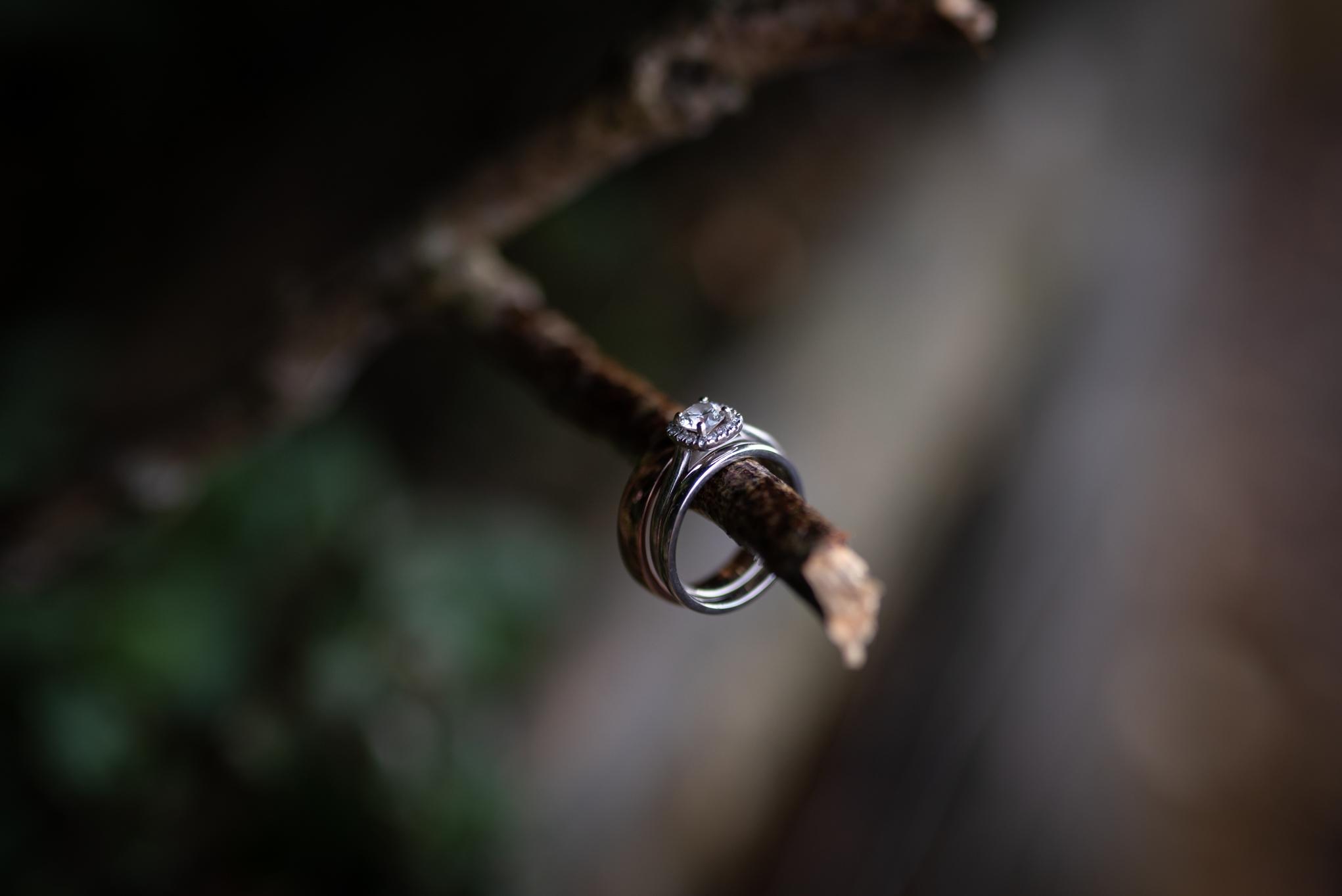 Wedding Rings - Powys Wedding Photography