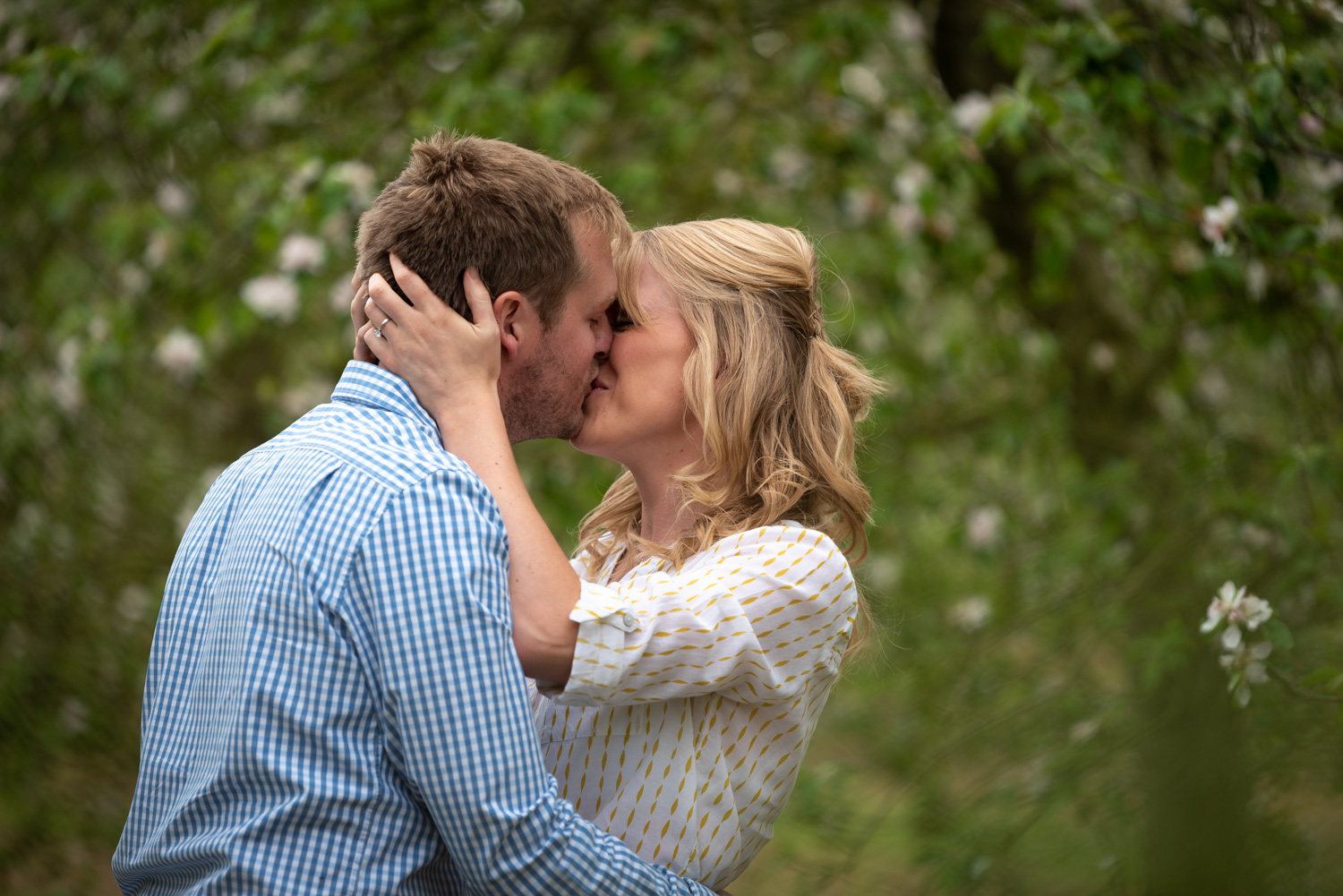 Kissing during apple blossom engagement photos