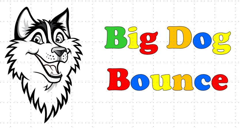 BIG DOG BOUNCE