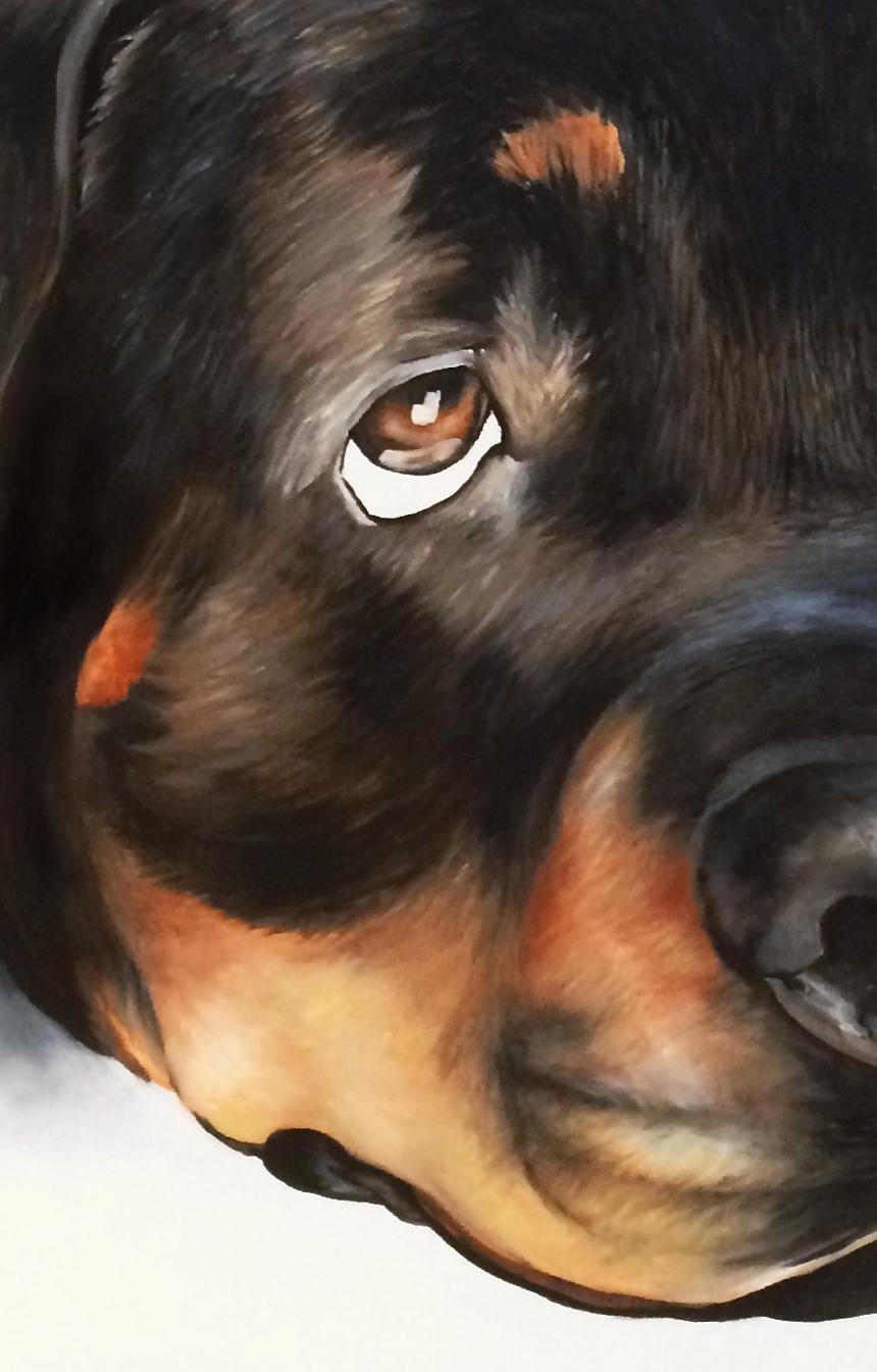 Gracie Detail