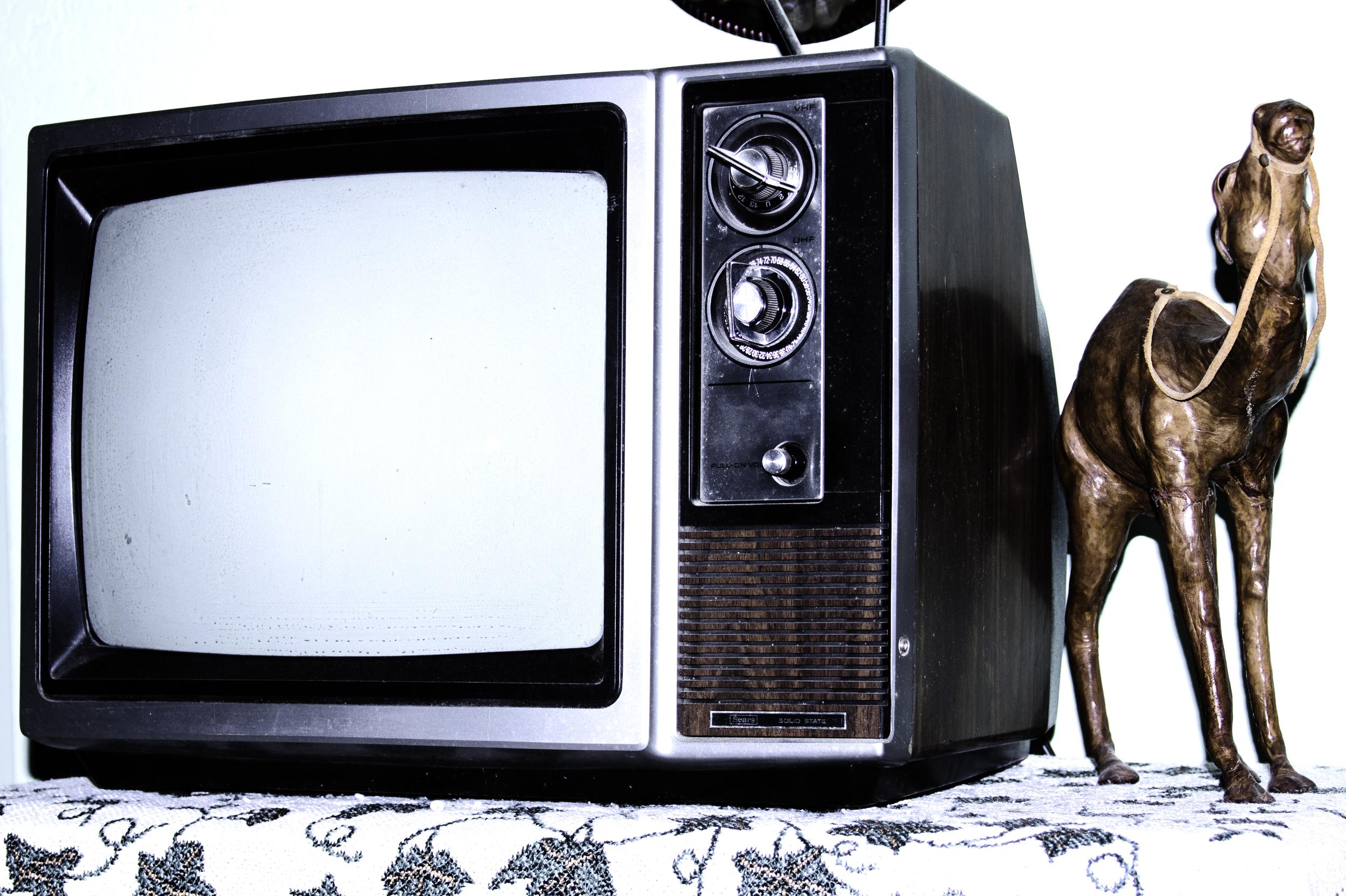 Tv camel.jpg