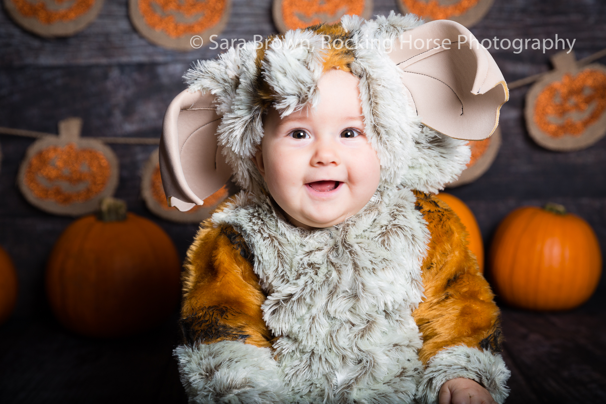 baby-furry- gremlin-photoshoot-themed-imahe-3L4A3918.jpg