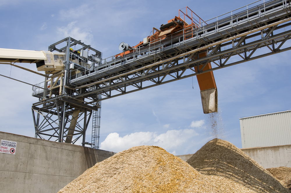 GPI_Biomass_Renewable_Energy