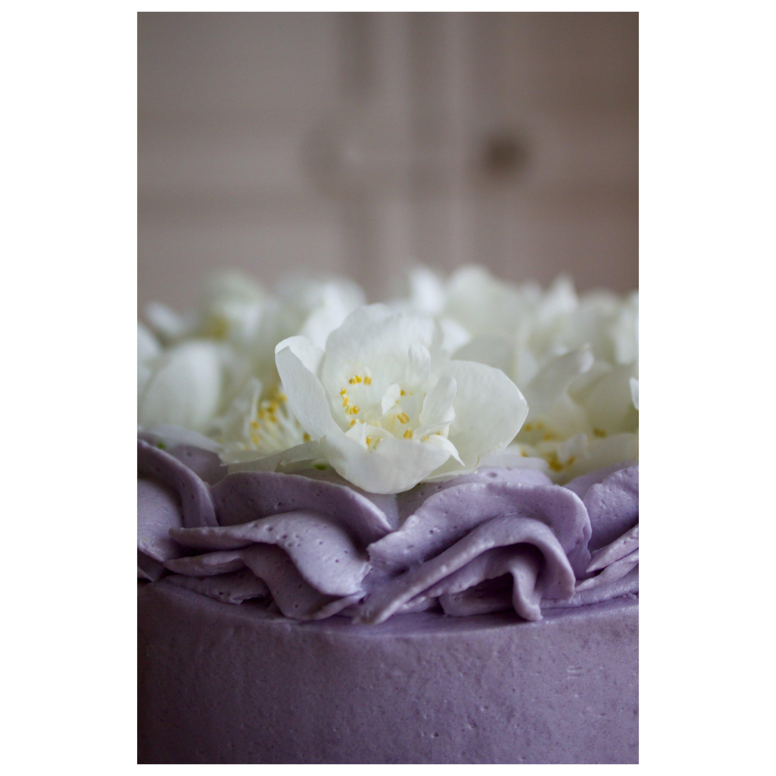 violet cake floral