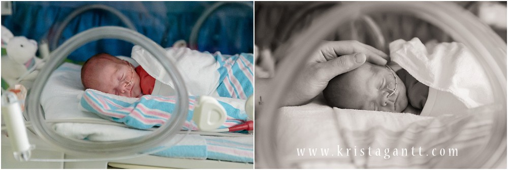 Krista Gantt PhotographyIMG_5144_Krista Gantt Photography.jpg