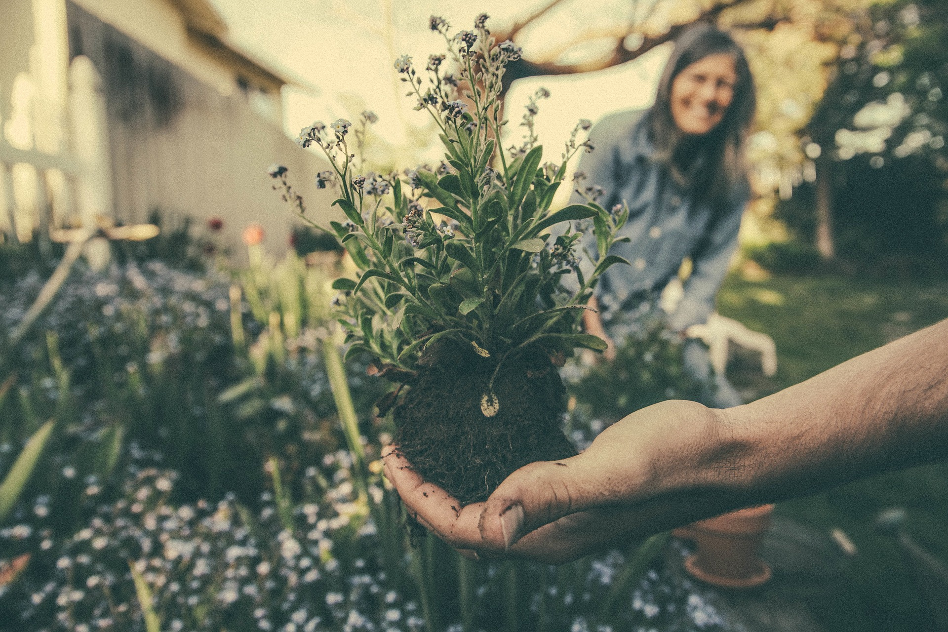 Environmentally-conscious plant lovers  who want to enhance the earth - not pollute it.