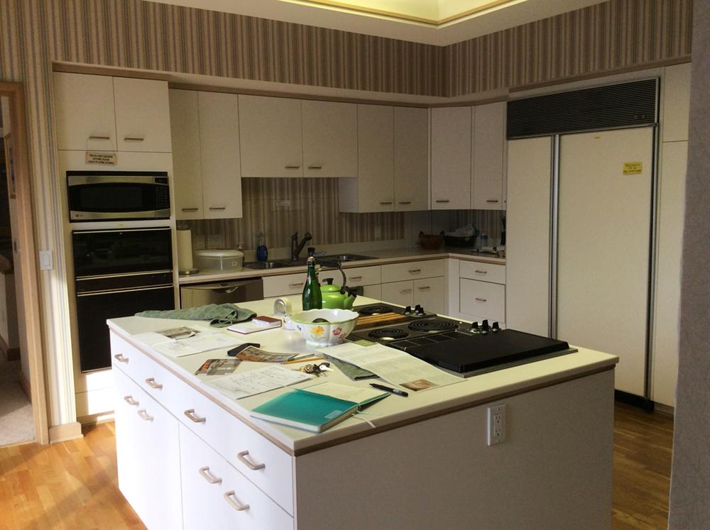 Kitchen Remodel Orig 2.jpg