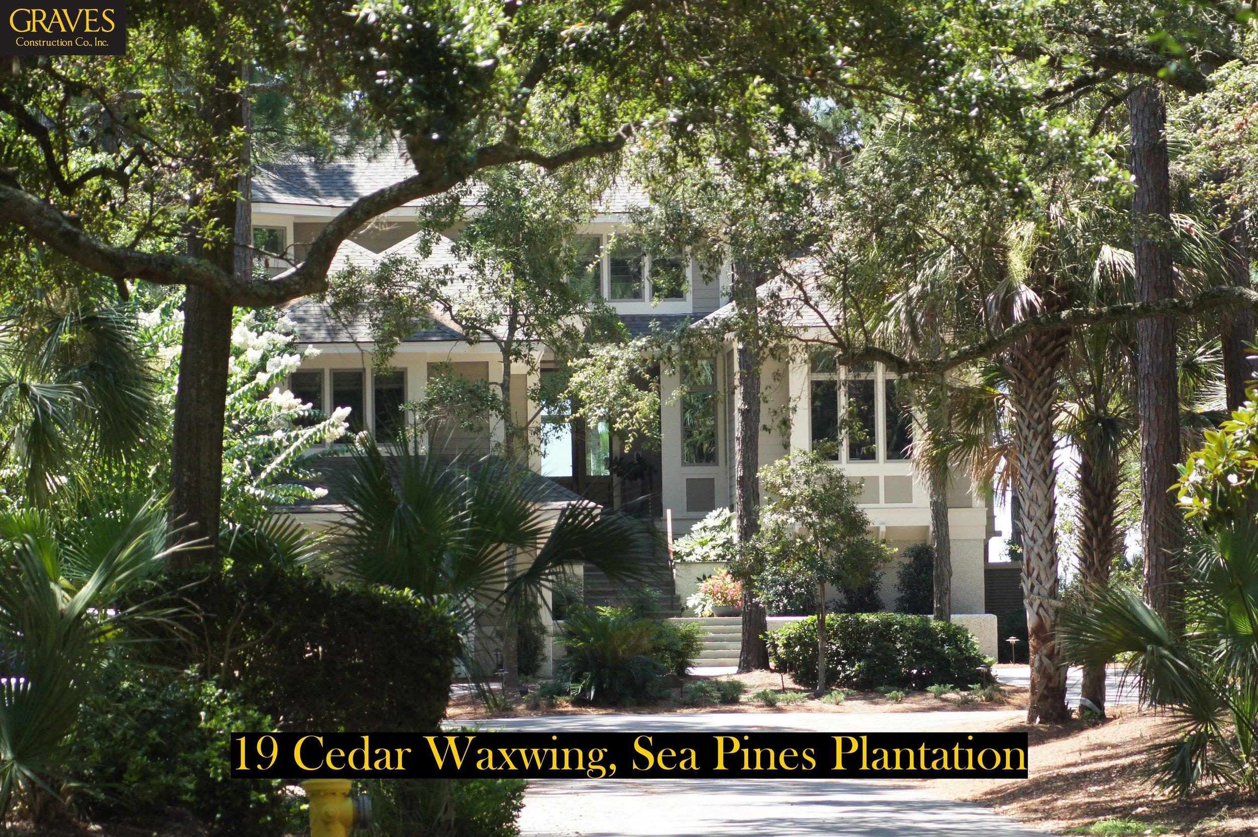 19 Cedar Waxwing - 2