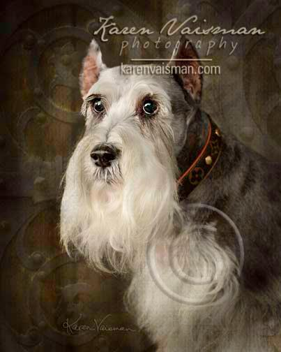 We Love Our Pets Like Children - Pet Portraits by Karen Vaisman Photography - (818) 991-7787 - Thousand Oaks