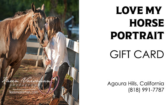 square gift card horse portrait photo 8x5.jpg