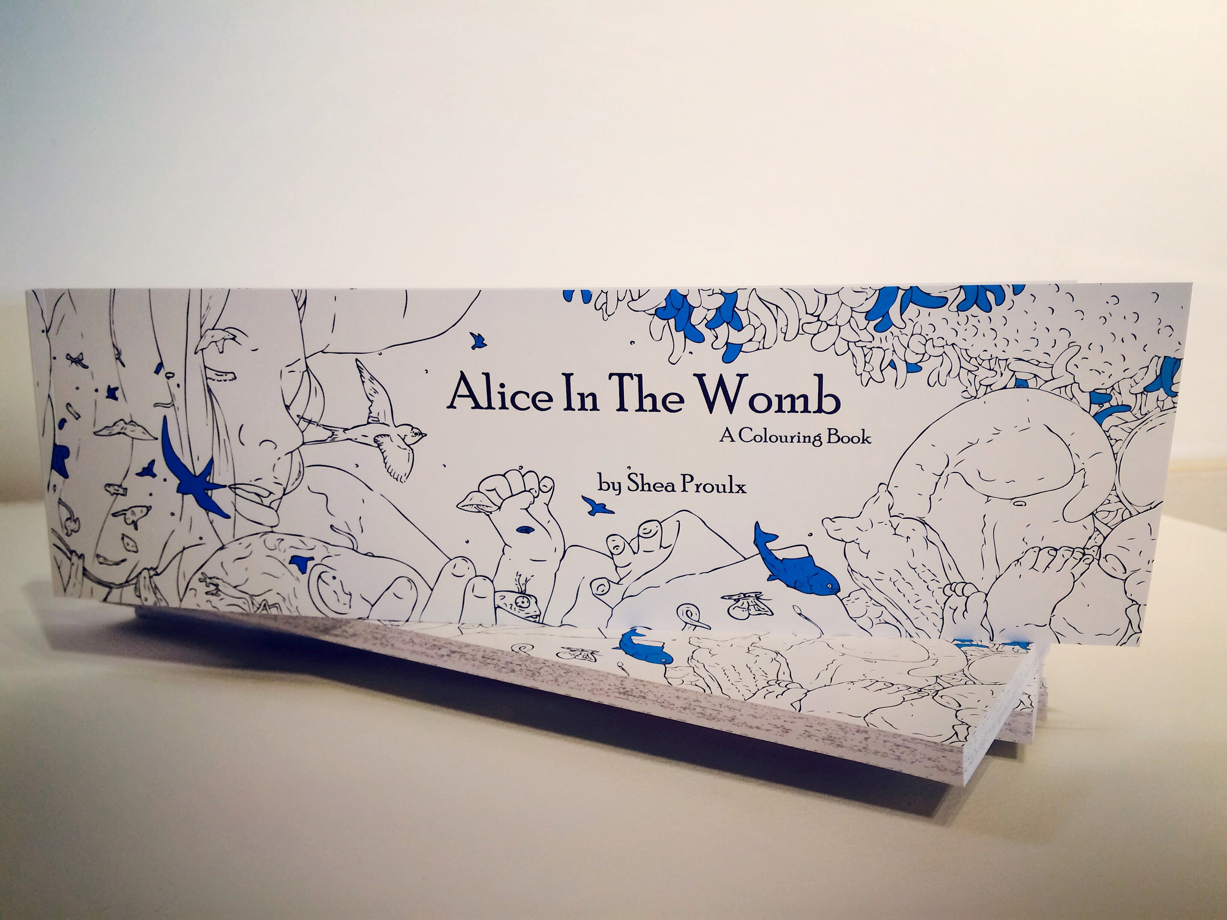 Alice In The Womb: a colouring book