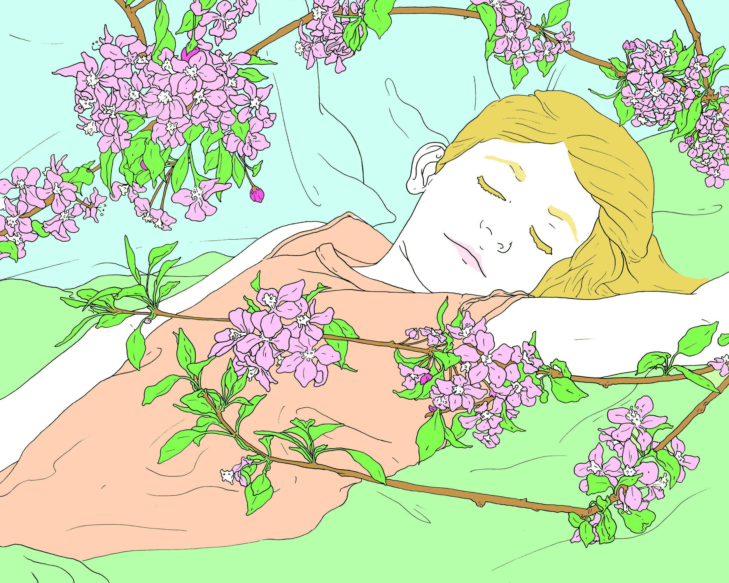 Alice Below Blossoms