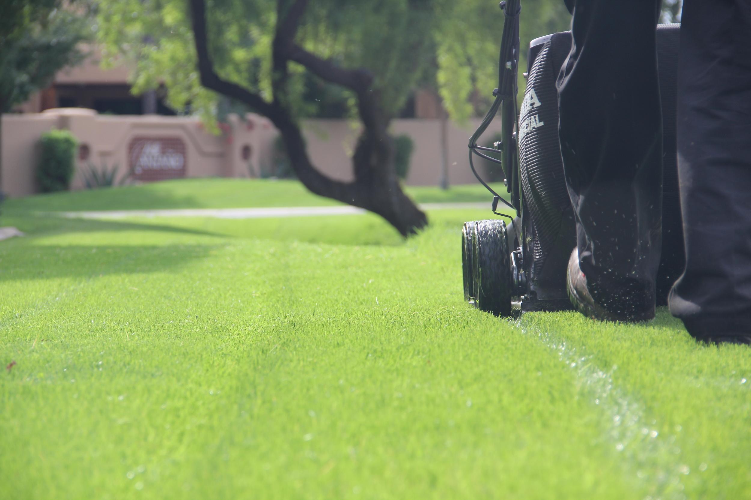 cornerstone-landscaping-AZ.JPG