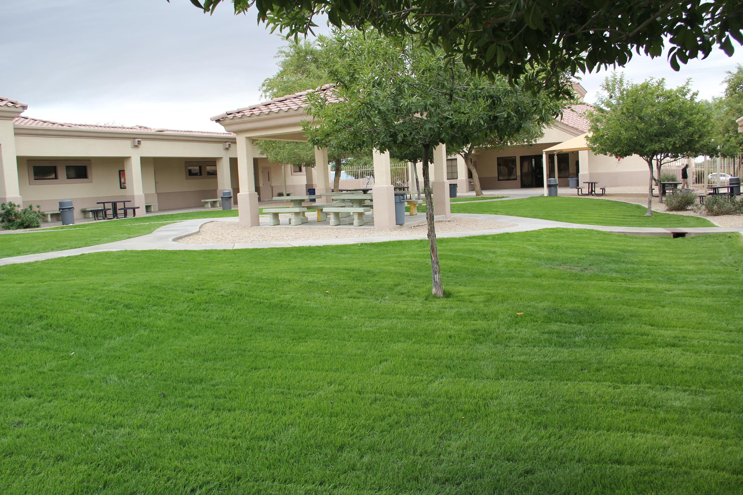 Commercial-Landscaping-Arizona.JPG