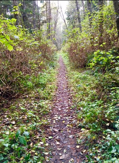 path to awesomeness