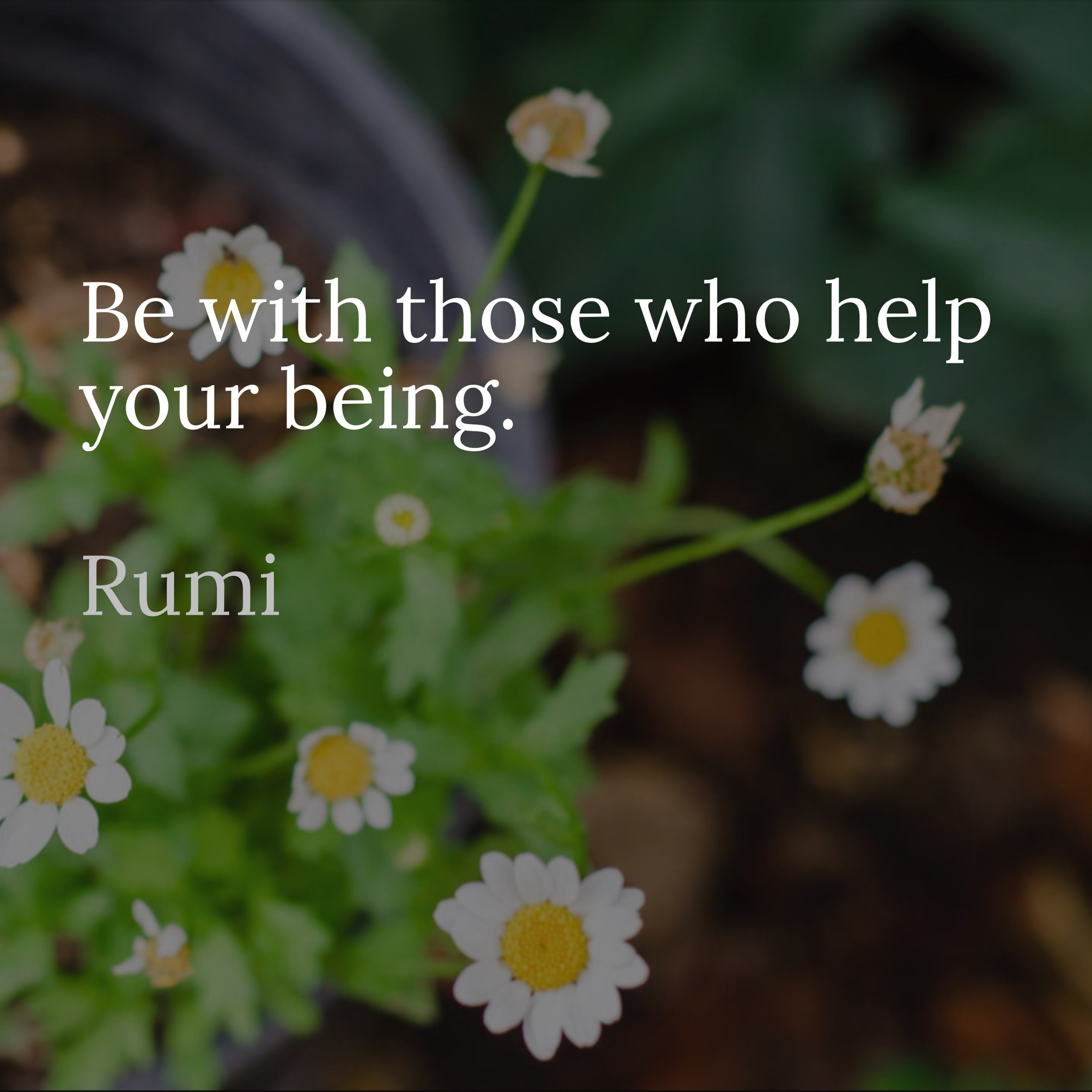 Be with those who help your being Rumi personalized writing sessions and book completion services by Liz Burke-Cravens