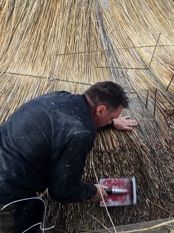 Using a thatching spade to form and align the thatch ends