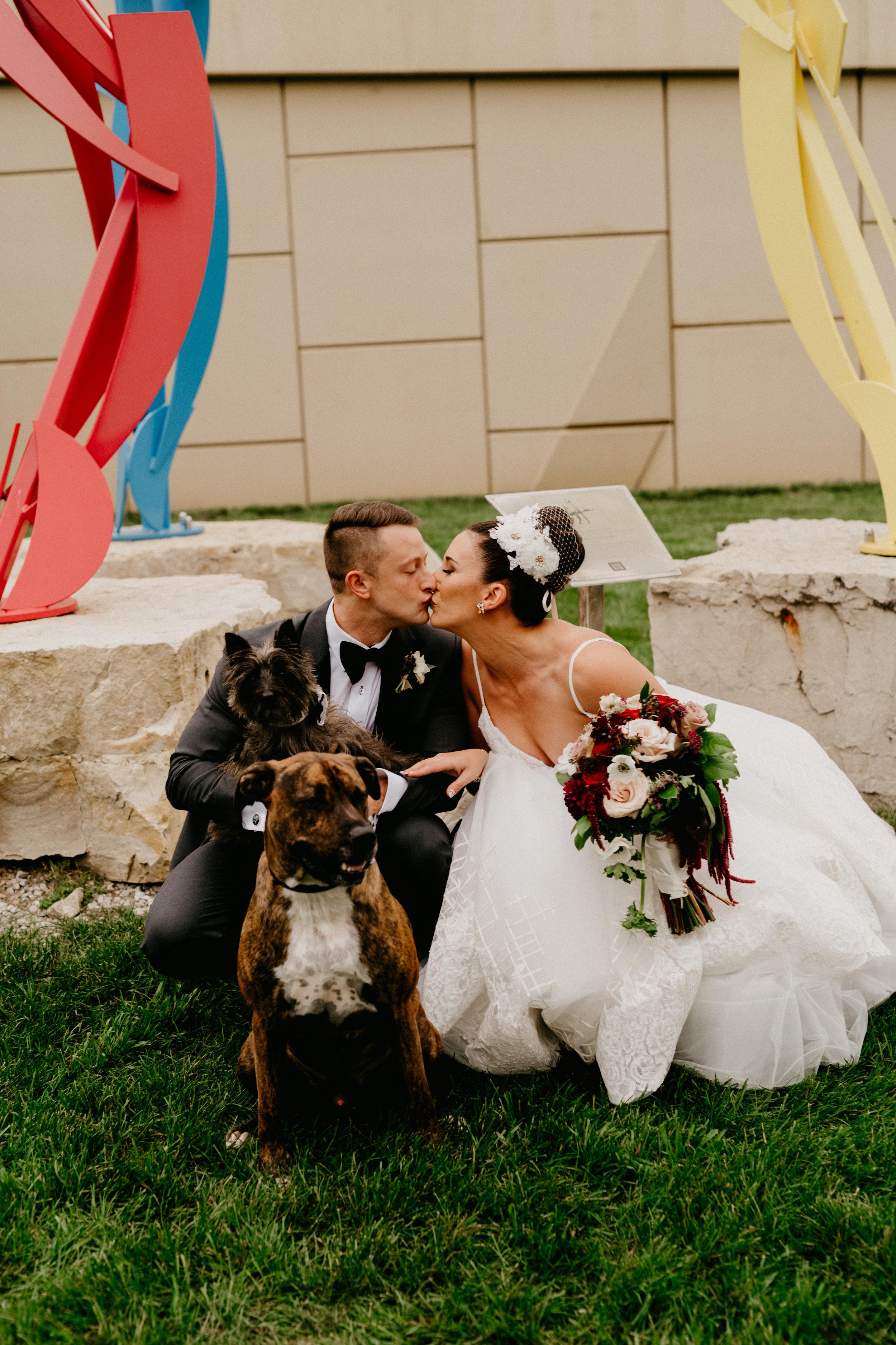 Milwaukee Wedding Dogs Studio 29 Photography