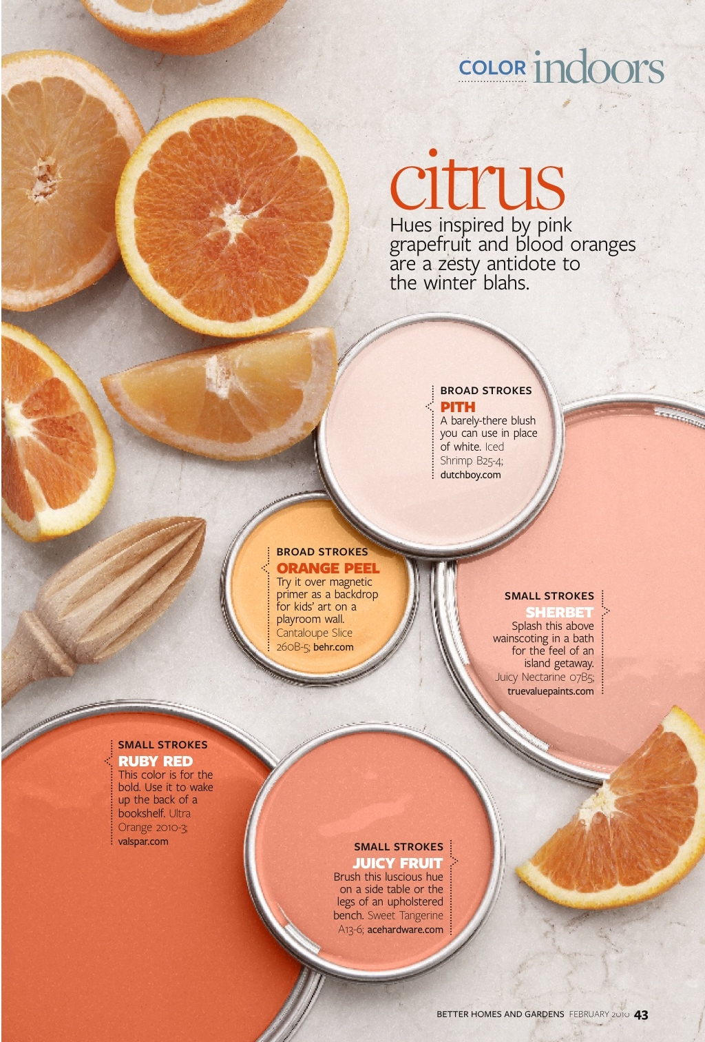 Color_citrus 1.jpg