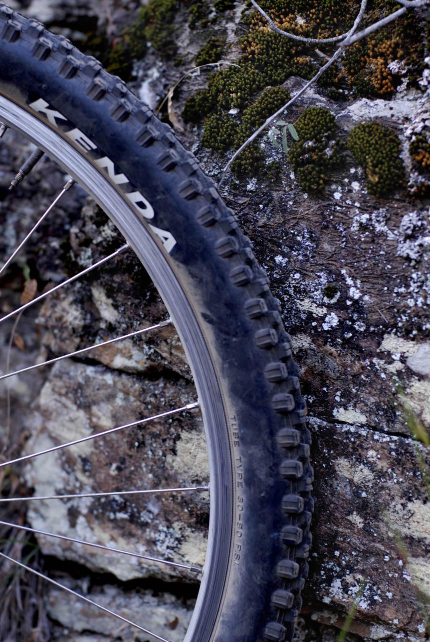 Kenda Nevegal 1.95 tire