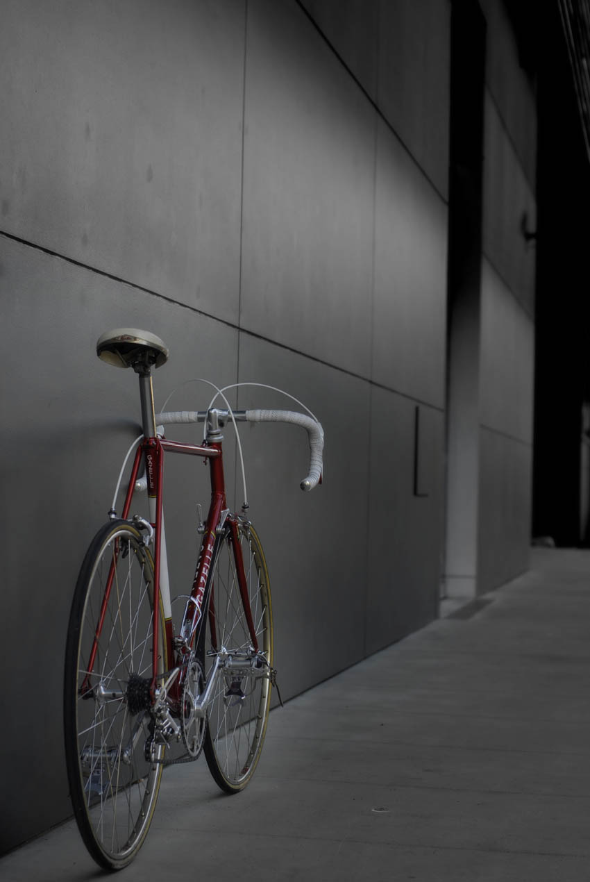Gazelle Bicycle Dieren