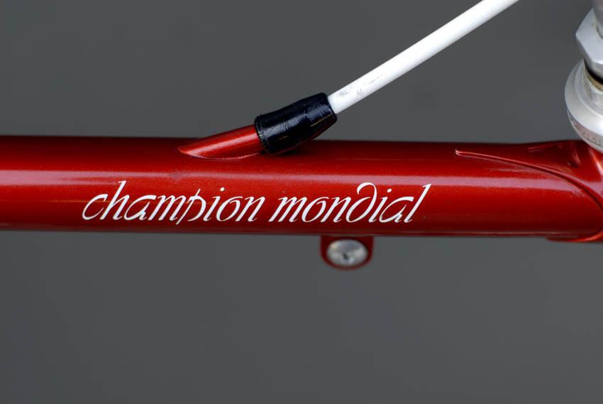 Champion Mondial decal on Brad Nightingale's Gazelle